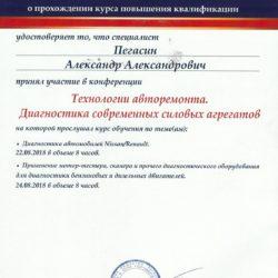Александр Пегасин